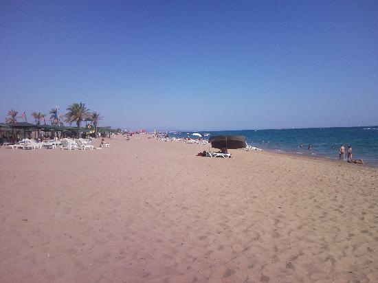 Pegasos World Hotel: What a beach.