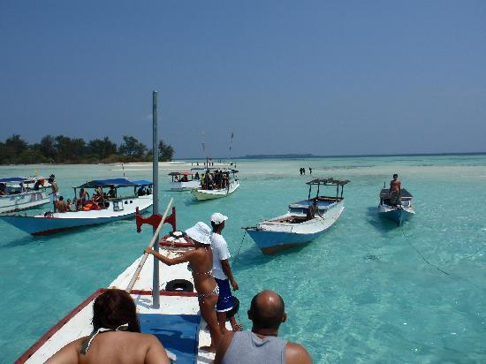 Kura Kura Resort: Robinson Crusoe trips