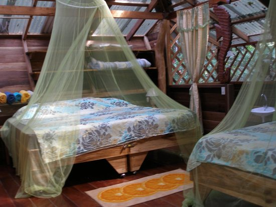 Congo Bongo Boutique Guest Houses: Bedroom