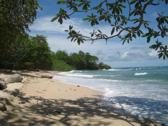 Santa Teresa, Costa Rica: playa