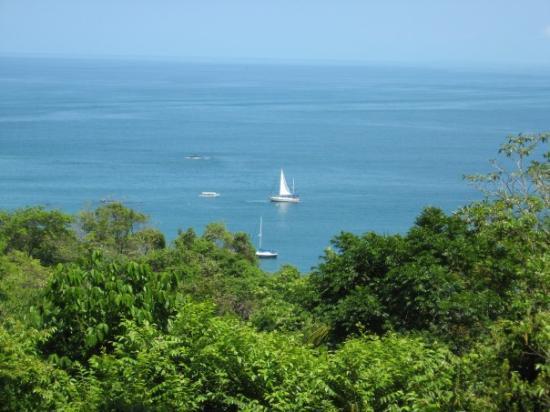 เกปอส, คอสตาริกา: The view from our pool