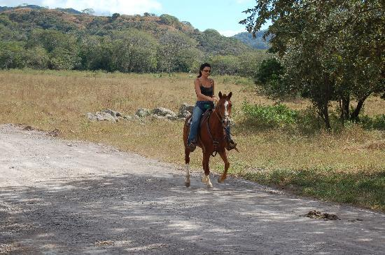 Santa Cruz, Kostaryka: riding solo on Black Stallion is perfect