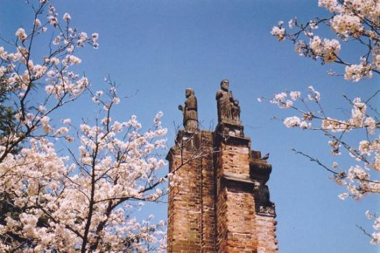 Spring 1984: Remains of Urakami Cathedral, near epicenter of atomic bombing, with blossoms
