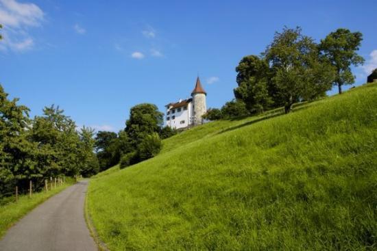 Kriens, สวิตเซอร์แลนด์: Schloss Schauensee oder eifach nomme s'Schlössli