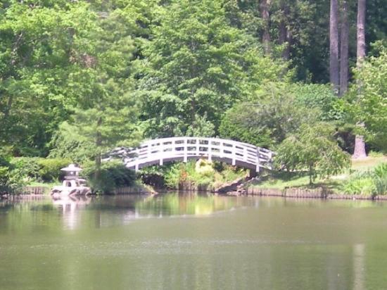 Sarah P. Duke Gardens 사진