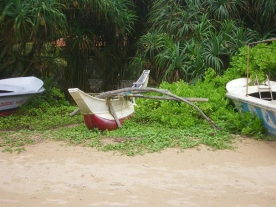 Бентота, Шри-Ланка: Bentota beach - west coast