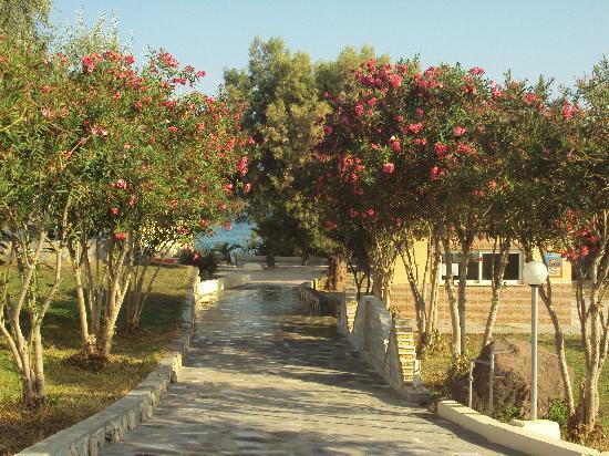 Eurovillage Achilleas Hotel : una parte del villaggio che porta alle stanze