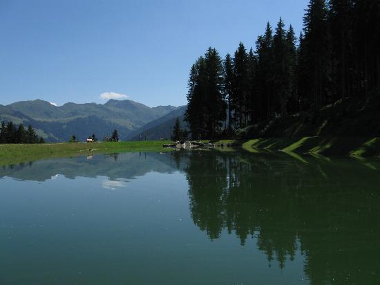 Pension Alpina: paisaje
