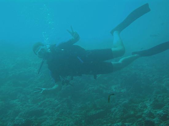 Fihalhohi Island Resort: Tauchspaß