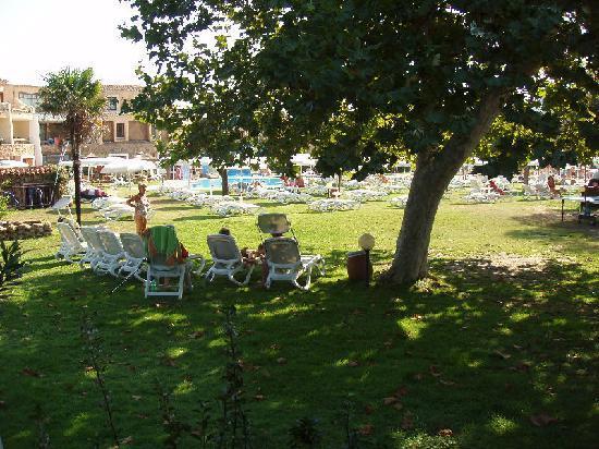 Hotel Resort & SPA Baia Caddinas: prato e piscine dalla nostra stanza