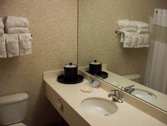 Bayside Hotel of Mackinaw : bathroom (lots of towels, huh?)