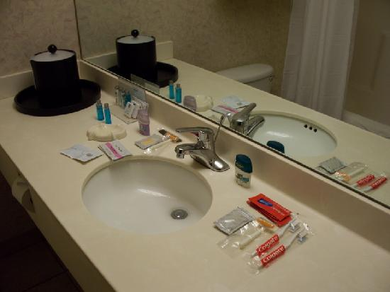 Bayside Hotel of Mackinaw: extra bathroom items available at front desk