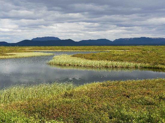 เรคยาวิก, ไอซ์แลนด์: The Myvatn