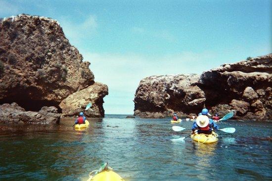 Santa Barbara Adventure Company: all accounted for