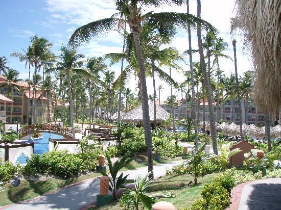 Majestic Elegance Punta Cana: Hotel main walkway