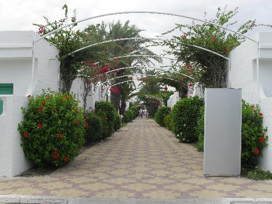 El Mouradi Club Kantaoui: Viale interno della struttura per accesso alla spiaggia
