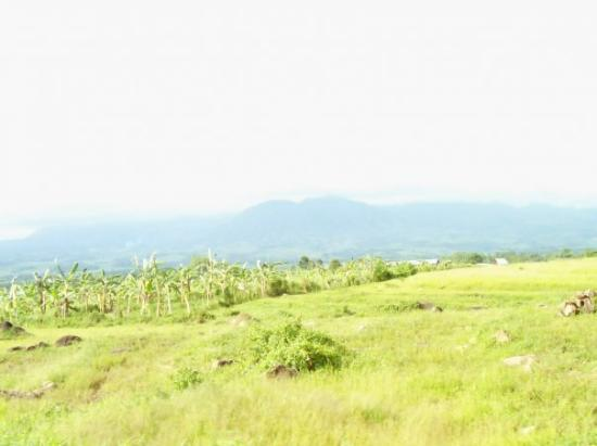 Bacolod, ฟิลิปปินส์: The mountains of Negros