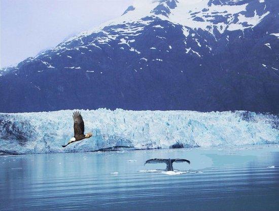 Rugged Alaska