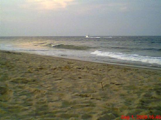 Atlantic Coast Inn: Fenwick Island State Park Beach 8/09
