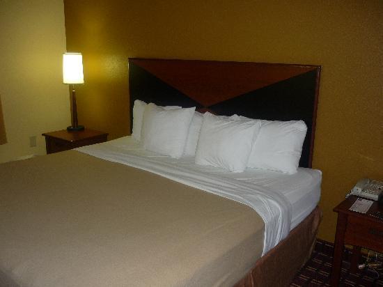 Sleep Inn Ft. Lauderdale International Airport: Bed