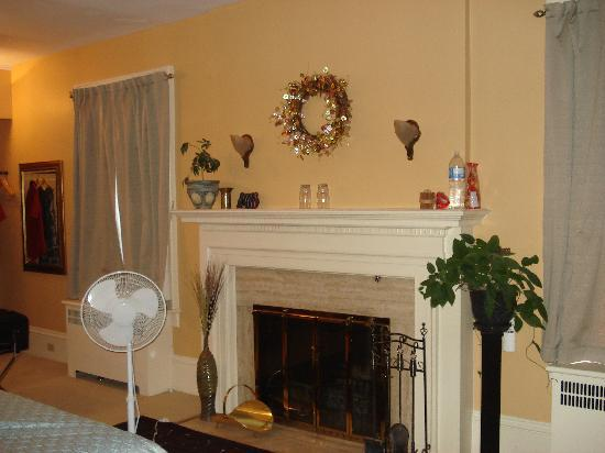 Gravenhurst, Canadá: The fireplace in the Algonquin Suite