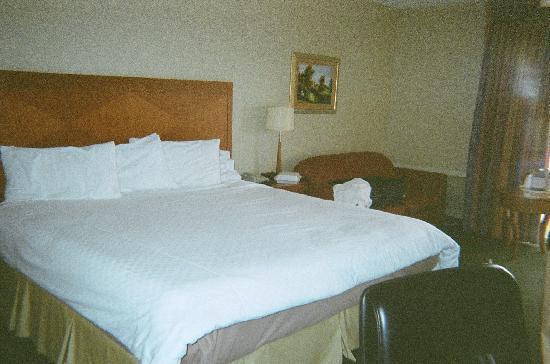 Howard Johnson Albuquerque Midtown: Bed