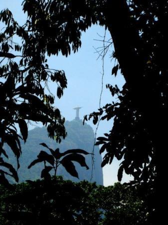 Botanical Garden (Jardim Botanico): Jardim Botânico(Brasil -RJ) Foto do Cristo