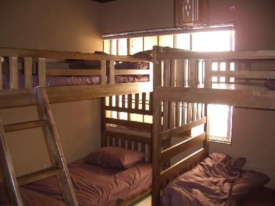Hostel Ann: ドミトリー1例