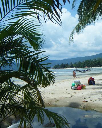 Novotel Samui Resort Chaweng Beach Kandaburi : the private beach