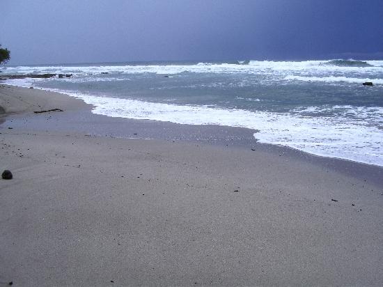 Milarepa: Surfer sur les vagues magnifiques