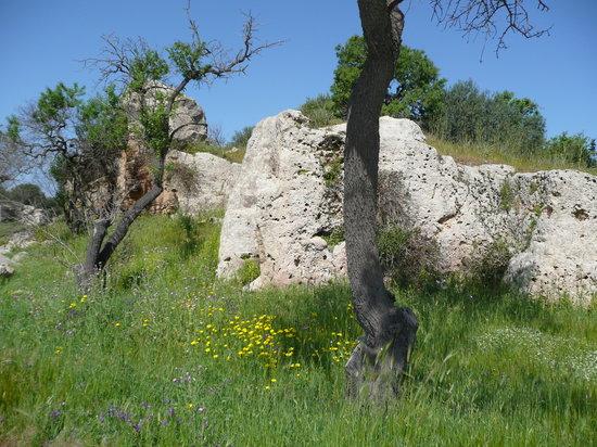 Campobello di Mazara, Italia: Cave di Cusa