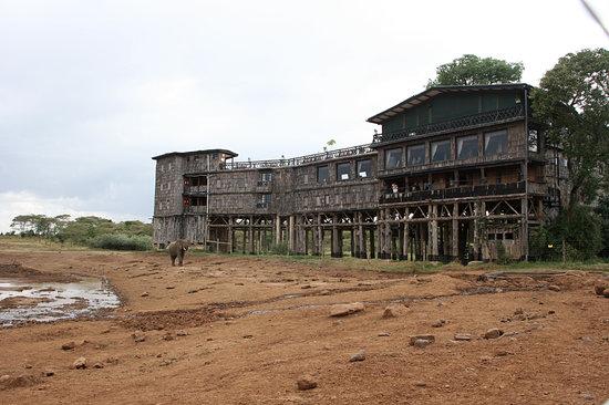 Kenia: Kenya