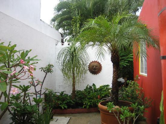 Casa De La Luz: Partial view of the garden