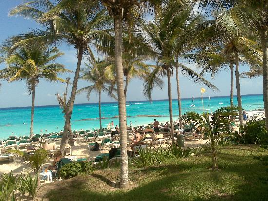 Hotel Riu Playacar: What a view 3 mins from room