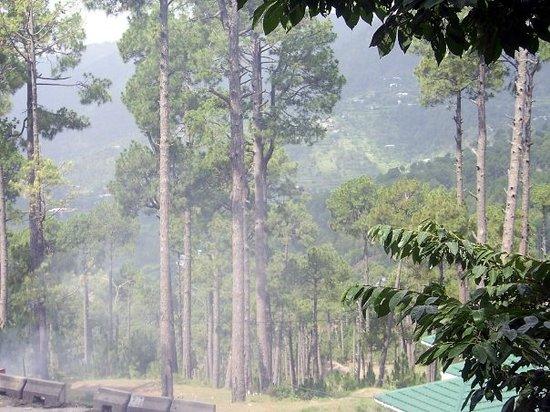 Shakarpariyan Hills