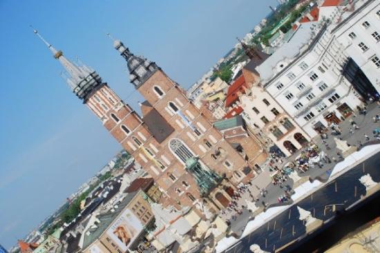 Plaza del Mercado: Pogled z Wieże ratuszowe