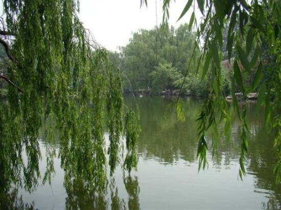 Beijing Zoo ภาพถ่าย