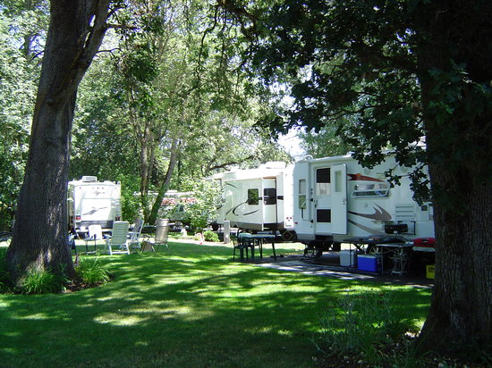 Deerwood RV Park : Site