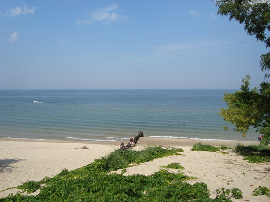 Saint Joseph, MI: Beach