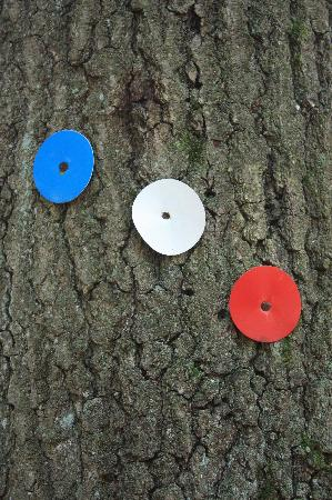 Manitoga / The Russel Wright Design Center: Follow the trail - red, white or blue