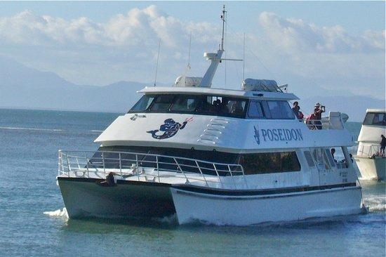 Poseidon Outer Reef Cruises : Poseidon
