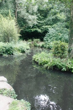 Fareham, UK : Holly Hill Woodland Park