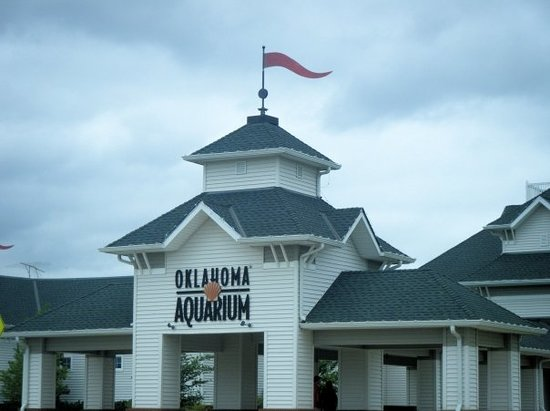 Oklahoma Aquarium Photo