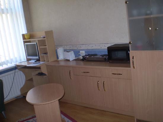 Kaunas, Lithuania: Kaunas Apartments: Small studio ensuite, cook equipments and TV