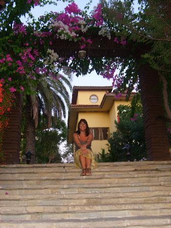 Alba Resort Hotel: Flowers around pool steps