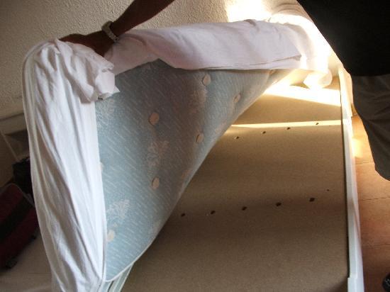 Ringo Hotel : Il letto senza rete, solo una tavola di truciolato