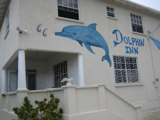 Dolphin Inn照片
