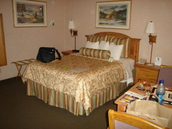 BEST WESTERN PLUS Inn at the Vines: San Francisco, Kalifornien, USA