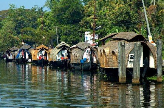 Kochi (Cochin) Photo