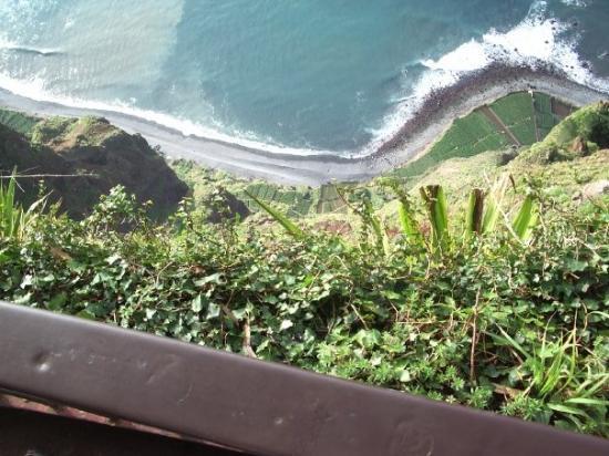 Estreito de Camara de Lobos,Madeira,  Portugal